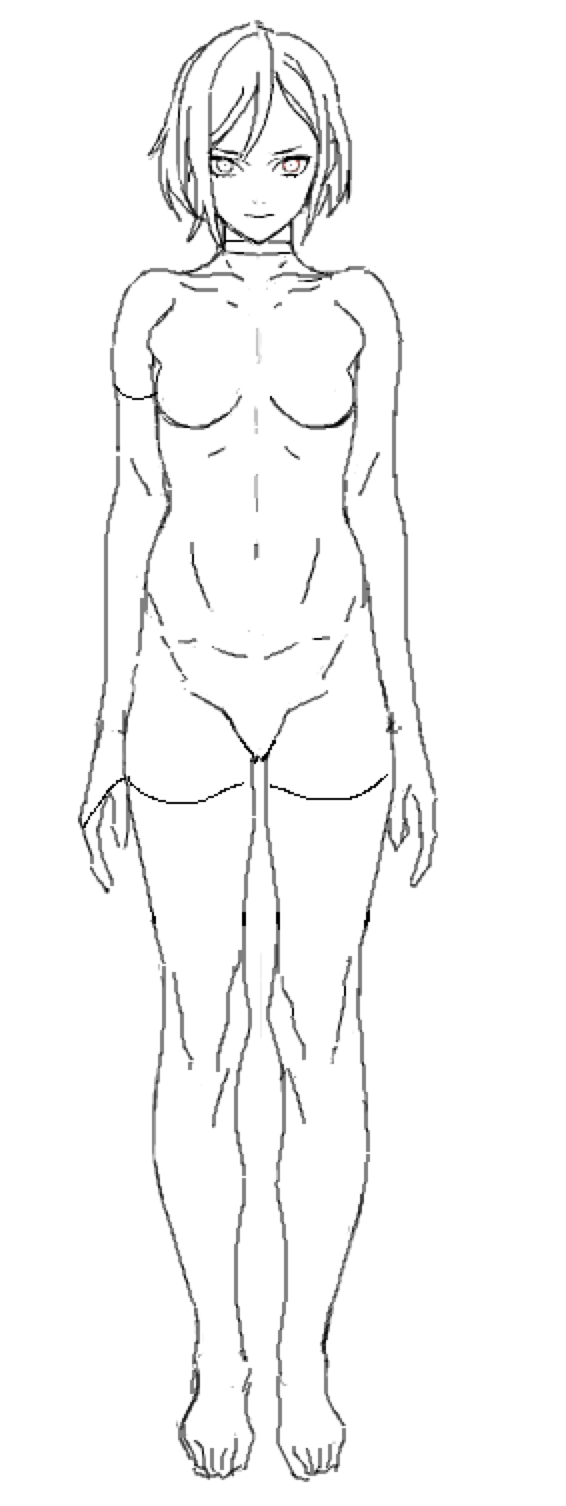 566x1506 Average Female Figure Reference Dessin Anatomy