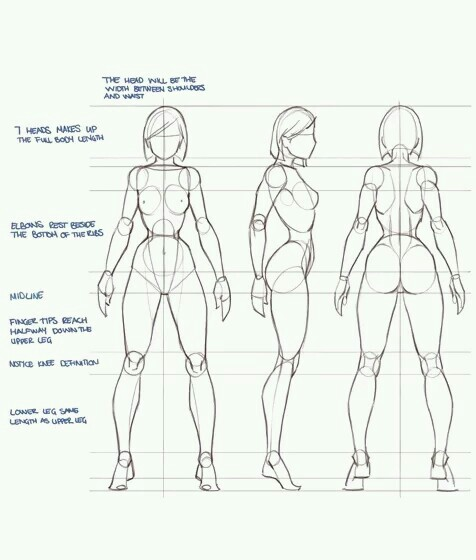 476x560 Female Body Props Drawing Female Bodies, Bodies