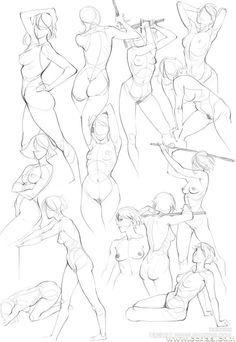 236x342 Female Body Anatomy Sketch