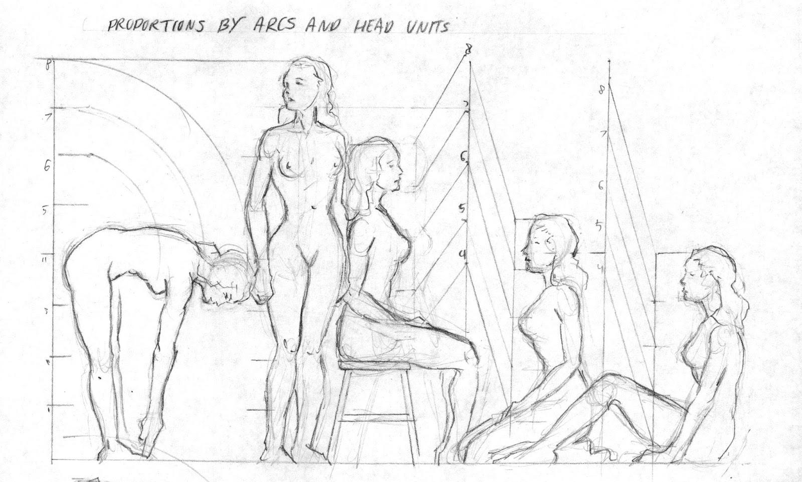1600x962 Somniare Lilium How To Draw Female Body, Body Proportions