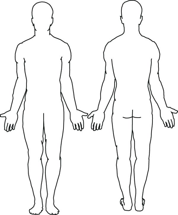 picture relating to Person Outline Printable named Woman System Determine Drawing at  No cost for