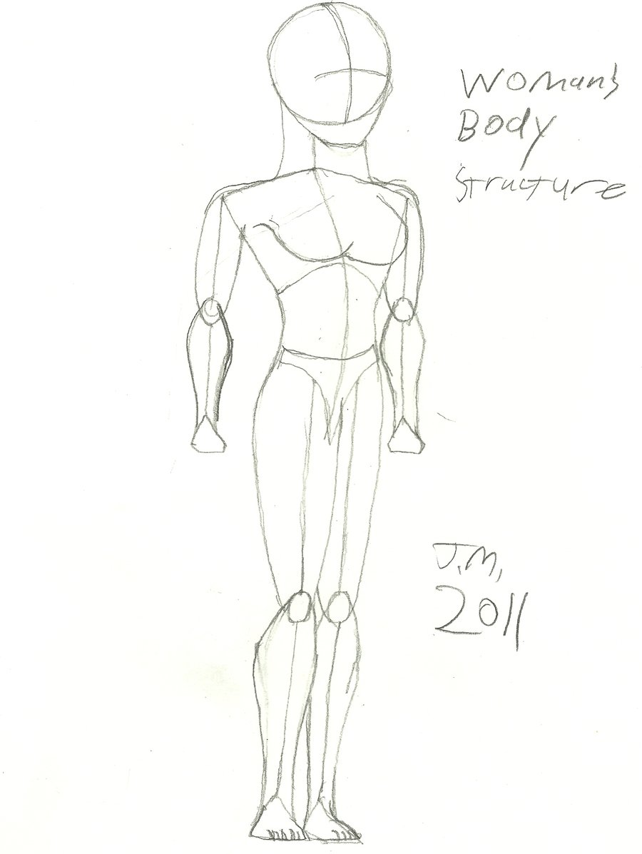 900x1197 Woman's Body Structure By Redjoey1992