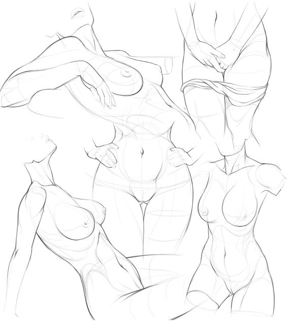 564x630 Bendrolet Sketches22 By Jammiman On Anatomy Drawing