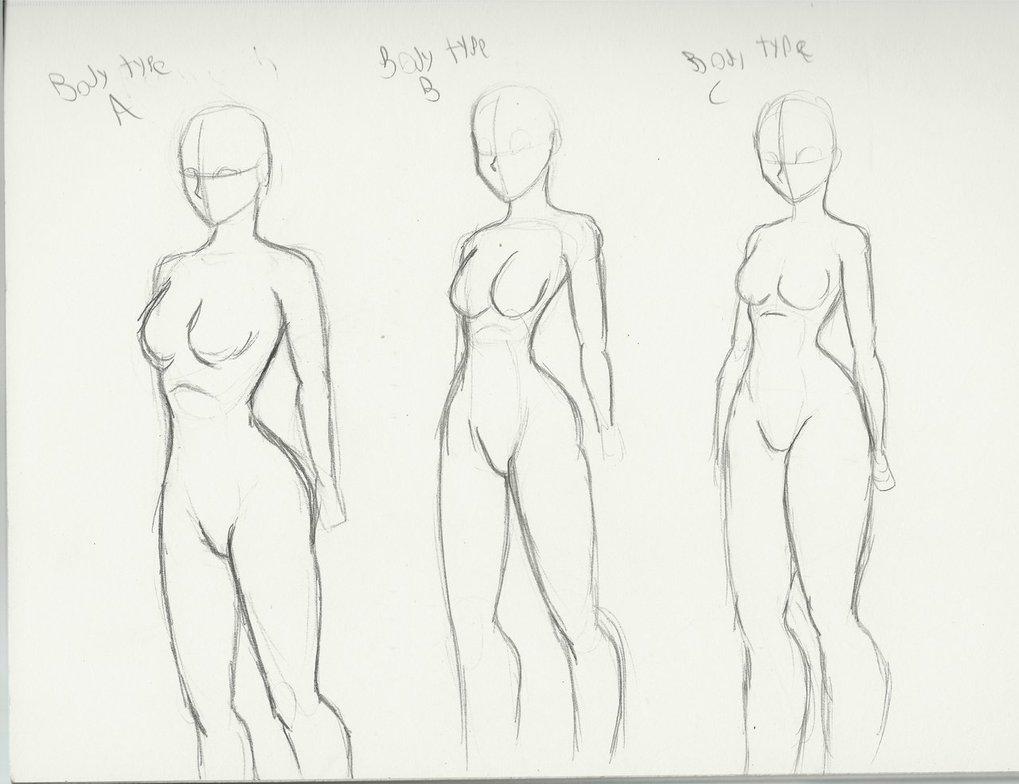 1019x784 Body Types By Dclzexon