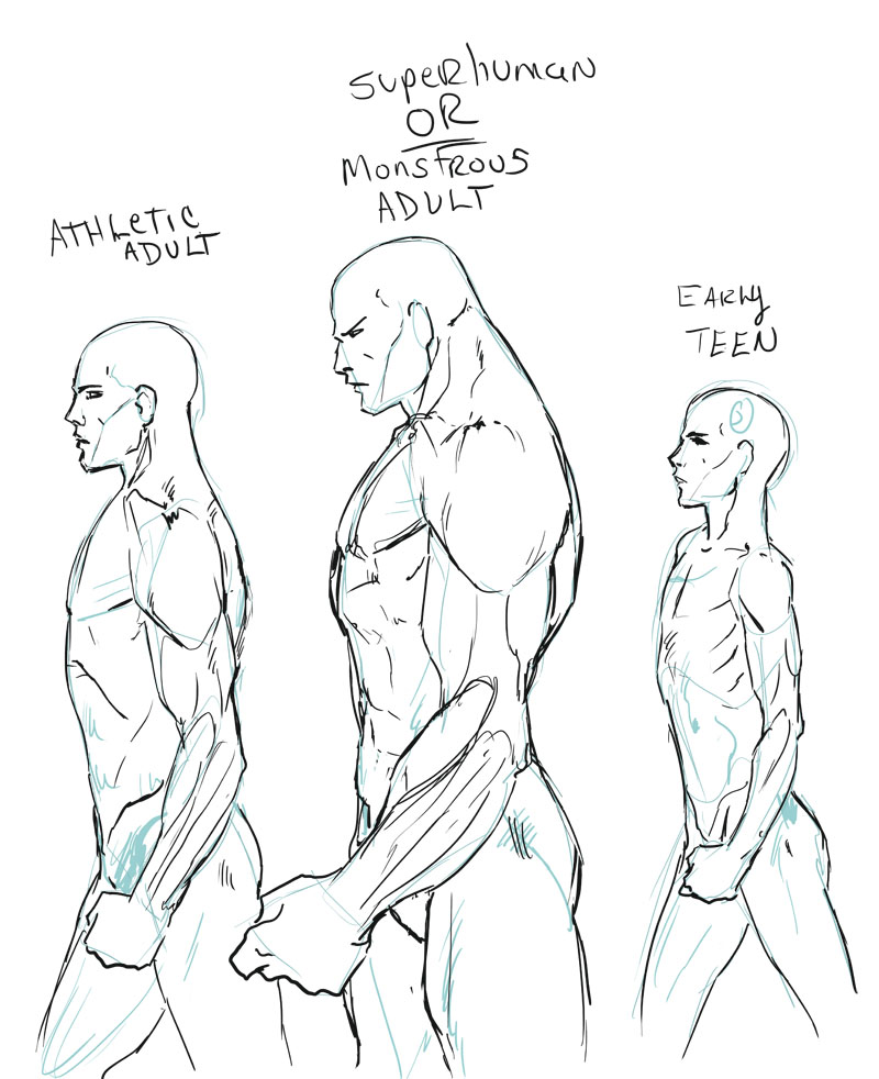 800x982 Male Body Type Comparison By Hoelho