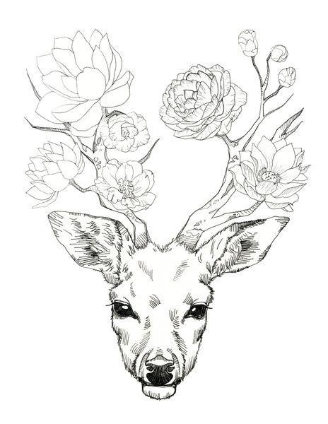 464x600 The Best Deer Art Ideas On Deer Drawing, Deer
