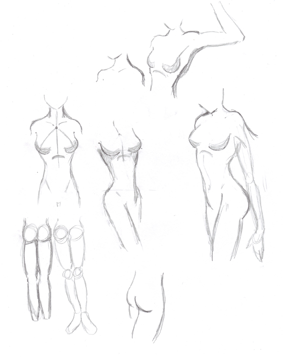 564x712 gallery female figure sketches