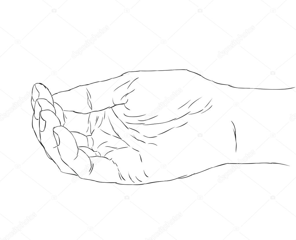 1023x829 Cupped Hands Drawing Hand Drawn Illustration Cupped Female Hands