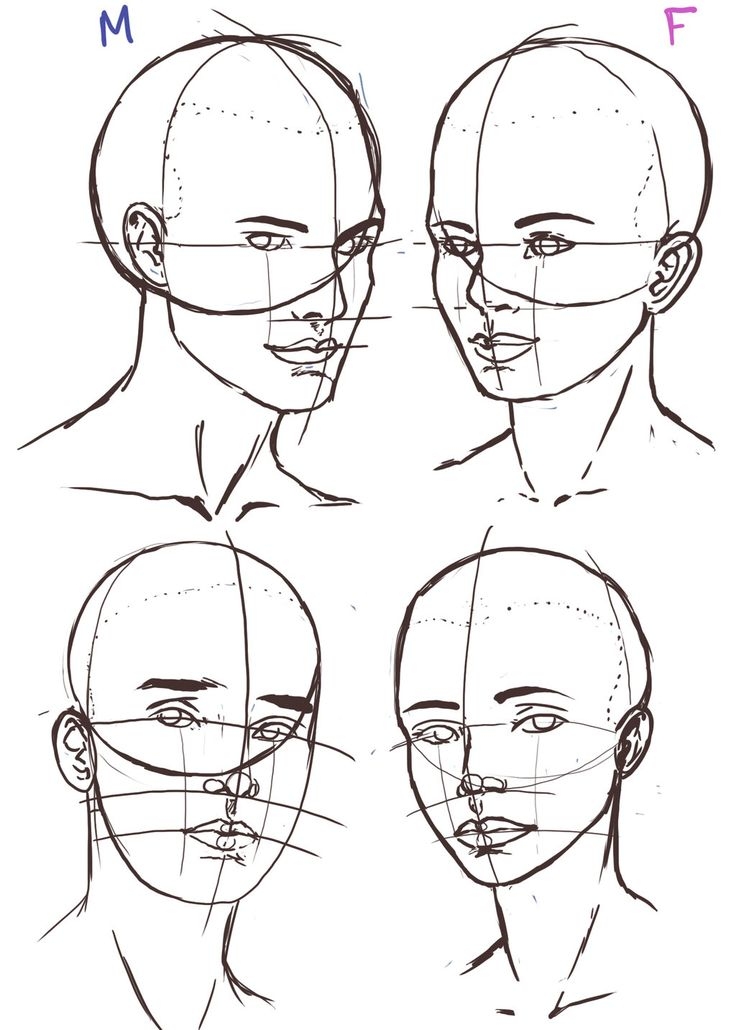 Female Head Drawing