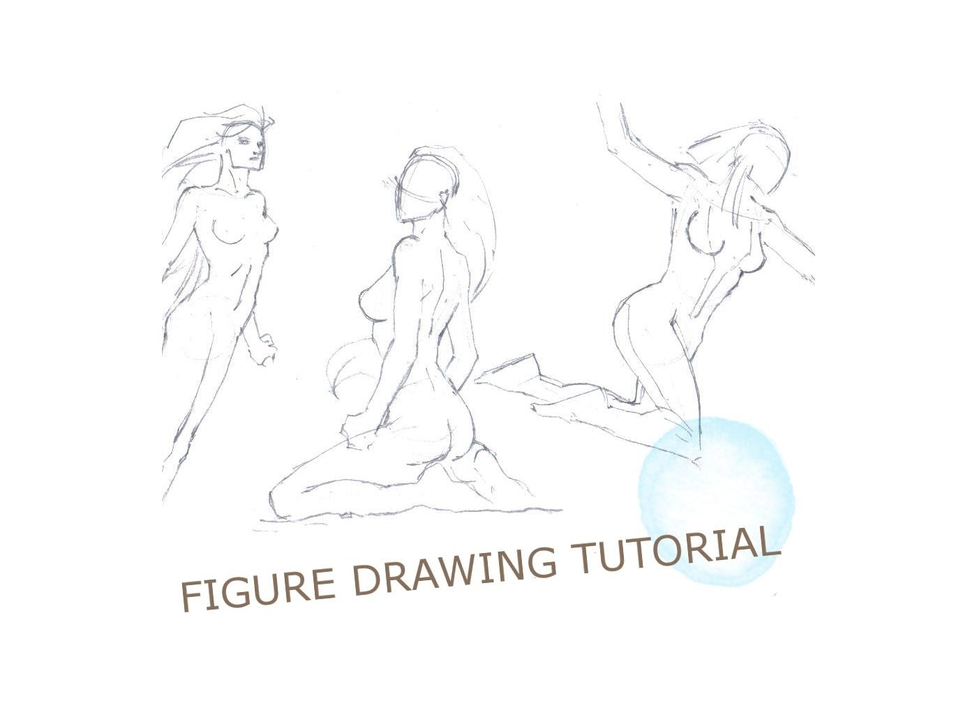 Female Human Body Drawing At Getdrawings Free For Personal Use