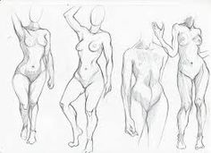 236x171 Human Anatomy Diagram. References Figure Drawing Human Anatomy