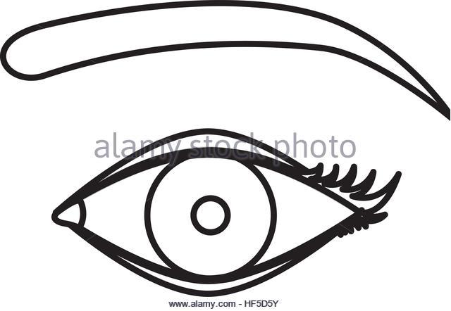 640x442 Isolated Female Eye Design Stock Photos Amp Isolated Female Eye