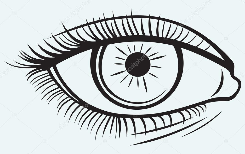 1023x646 Silhouette Of A Female Eye Stock Vector Kreativ