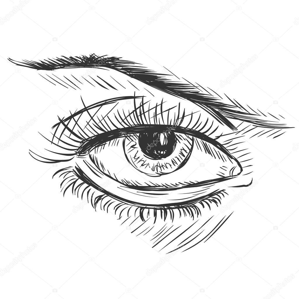 1024x1024 Vector Sketch Illustration