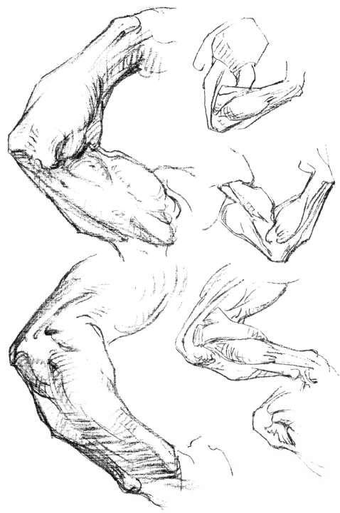Female Skeleton Drawing