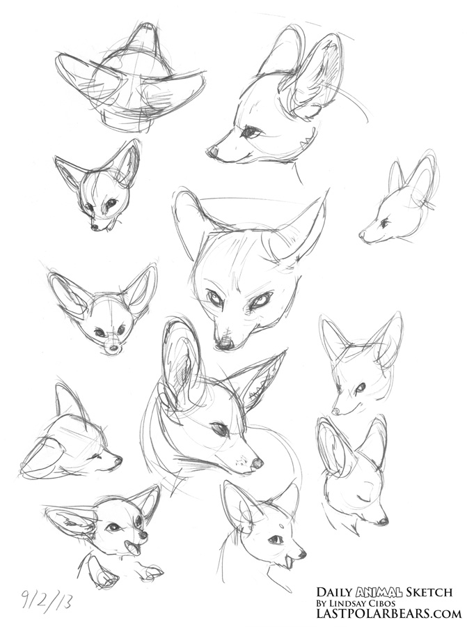 671x900 Lindsay Cibos' Art Blog Daily Animal Sketch Giraffe And Fennec Fox
