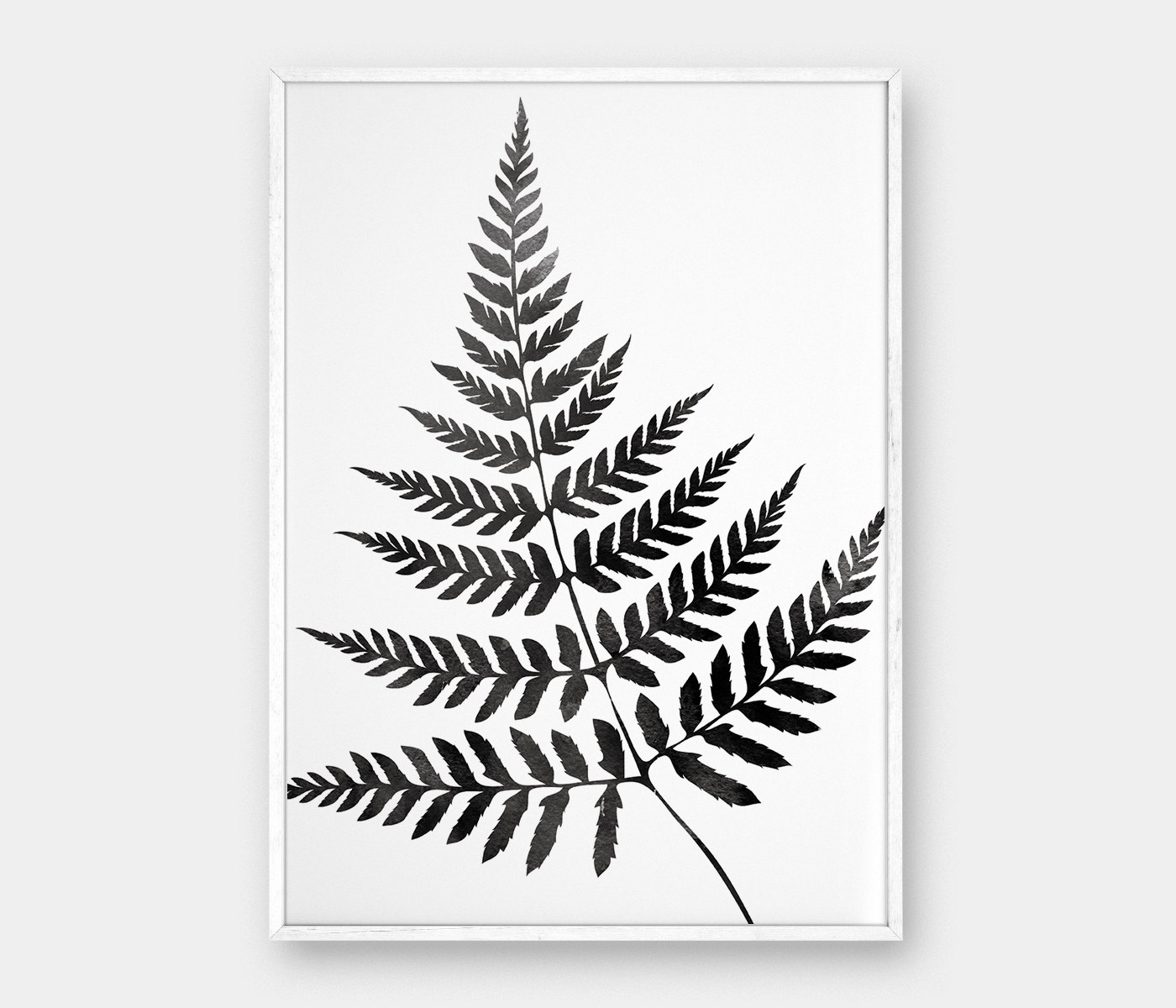 Fern Botanical Drawing At Getdrawings Free For Personal Use
