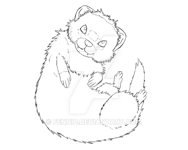 600x480 Commission Curled Up Ferret By Fennic
