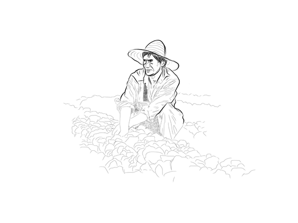 Field Drawing