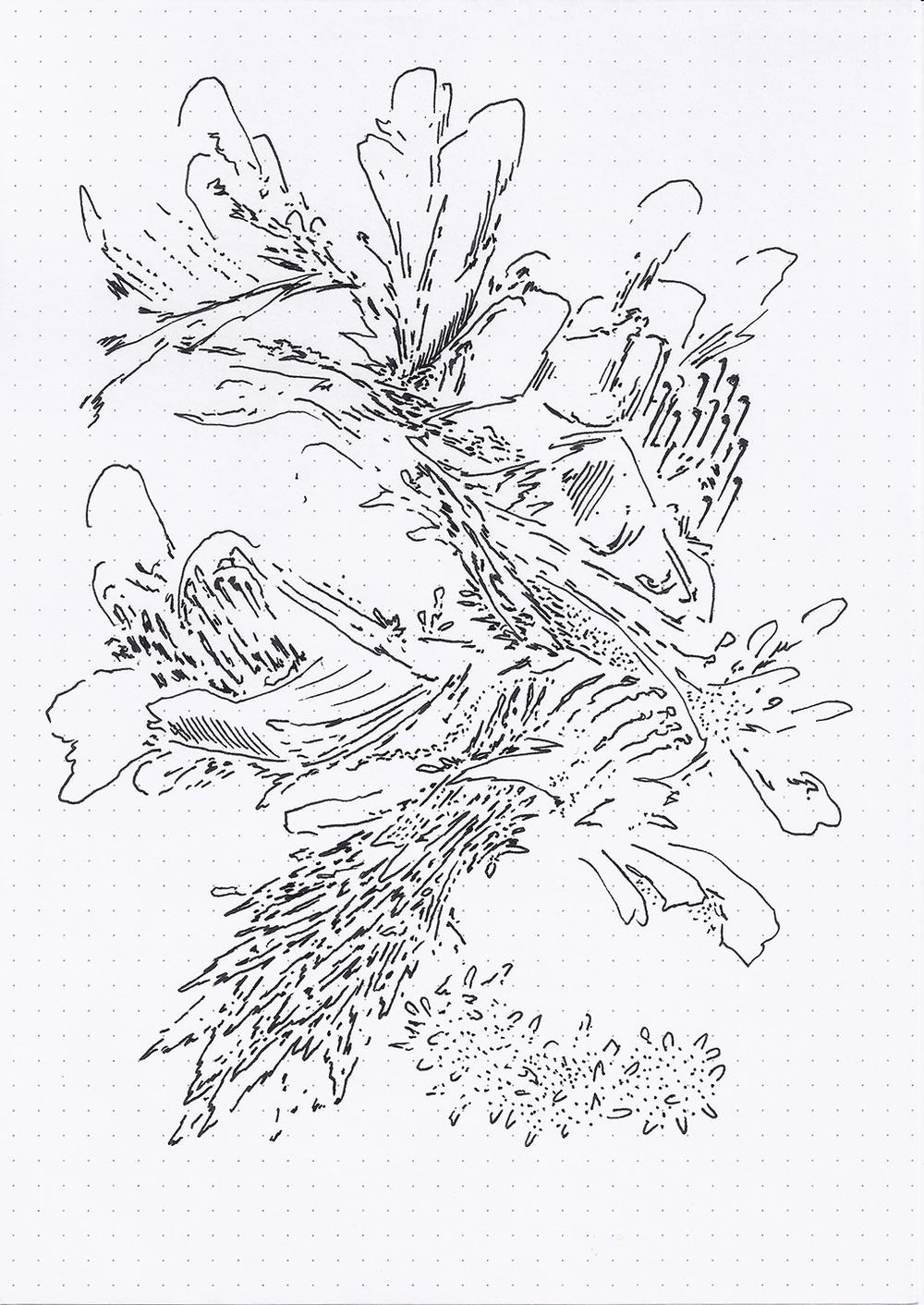 1000x1412 Field Drawings Michael Childress