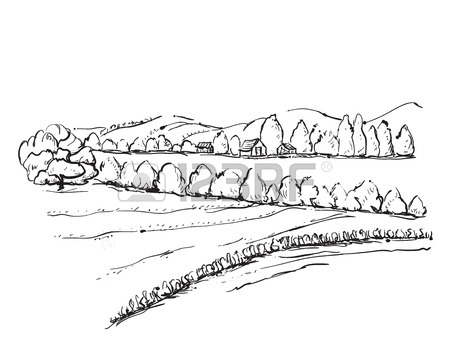 450x364 Hand Drawn Field Sketch. Trees And Field Royalty Free Cliparts
