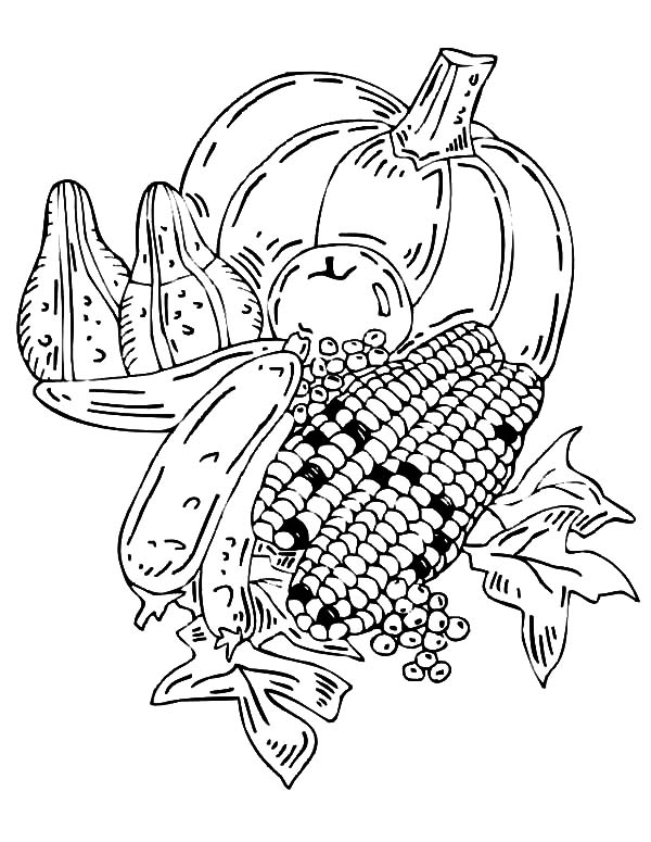 600x775 Harvests Crop Fields Coloring Pages Harvests Crop