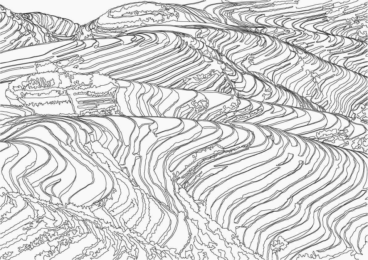 1193x844 James Tandy Final Major Project Rice Fields