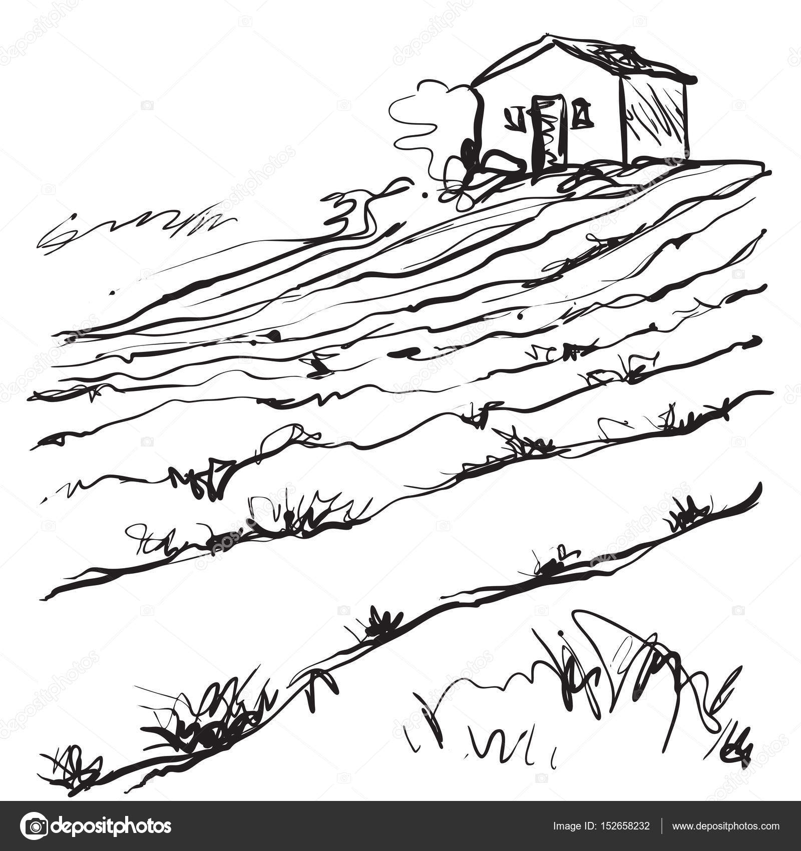 1600x1700 Hand Drawn Illustration Of A Fields Stock Vector Yuliia25