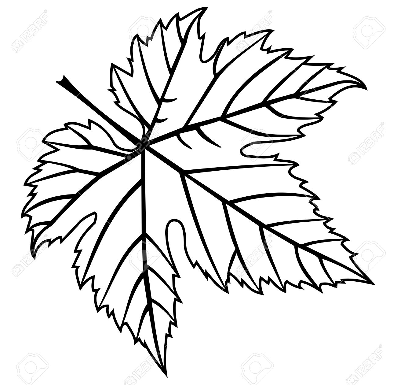 Fig Leaf Drawing at GetDrawings.com | Free for personal use Fig Leaf ...
