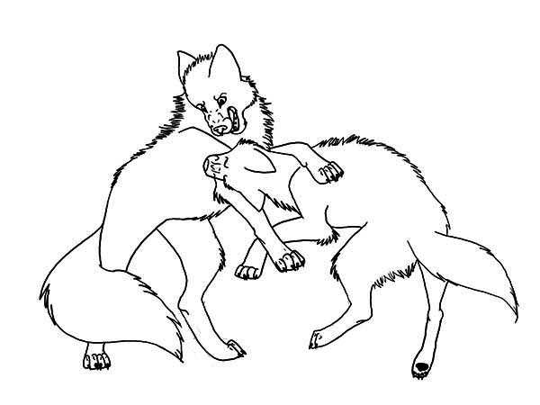 Fighting Wolves Drawing at GetDrawingscom Free for personal use
