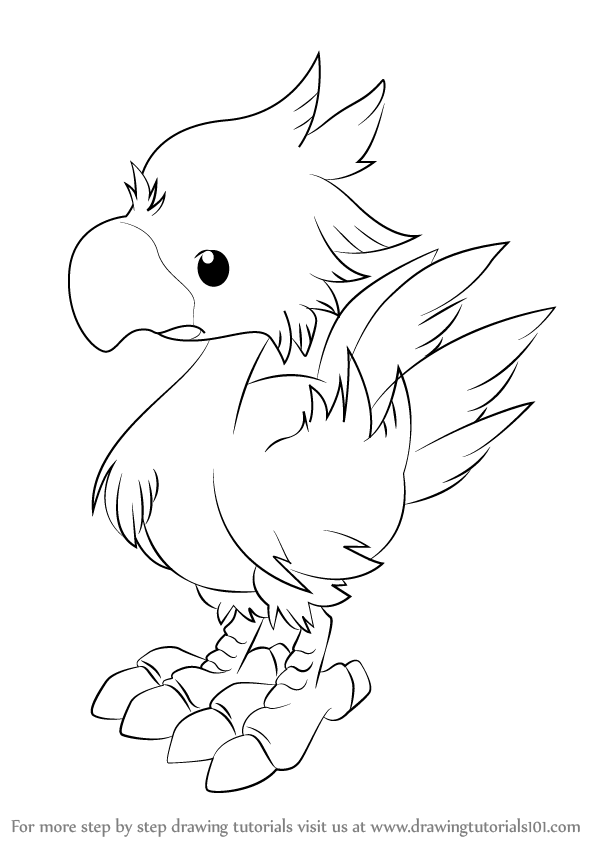 598x844 Learn How To Draw Chocobo From Final Fantasy (Final Fantasy) Step