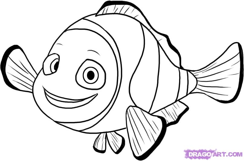 808x533 How To Draw Nemo From Finding Nemo Step 6 Stencils And Templates