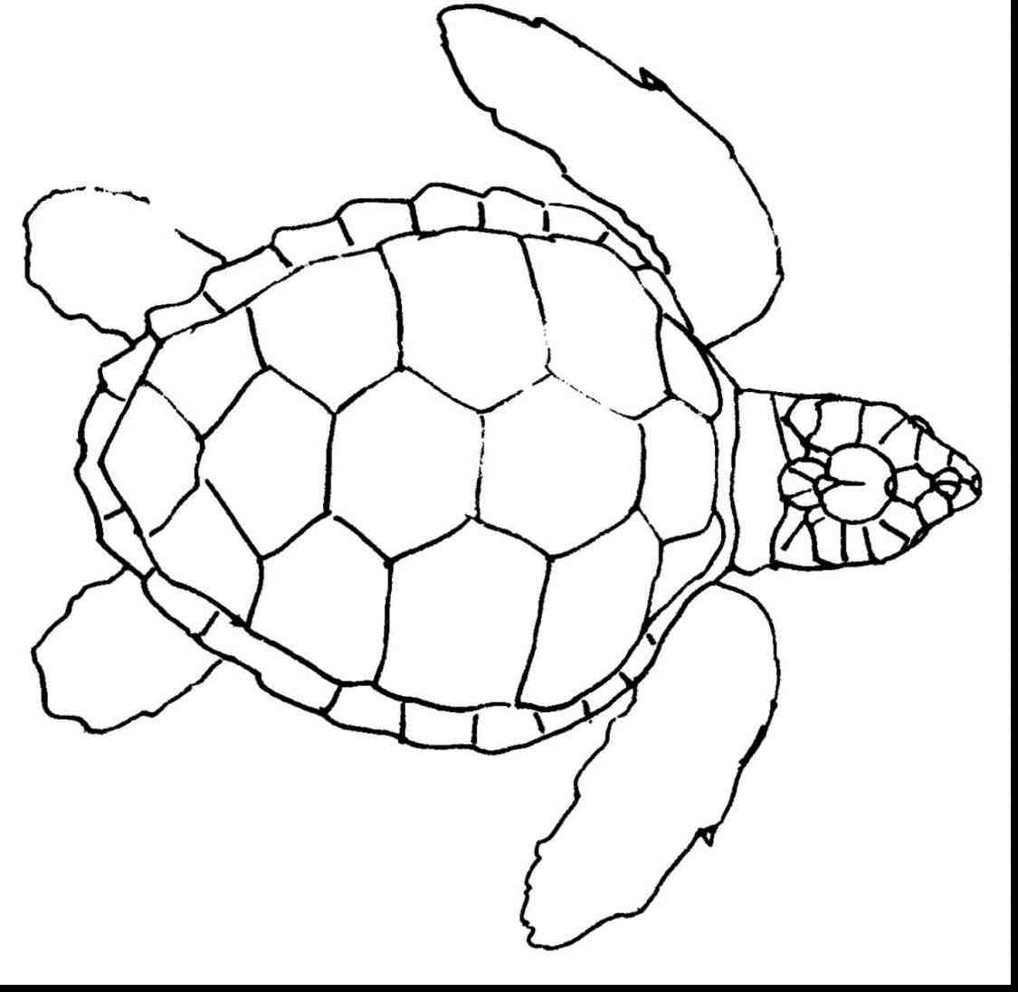 1125x1096 Download Finding Nemo And Coloring Pages How To Draw On Snowflake