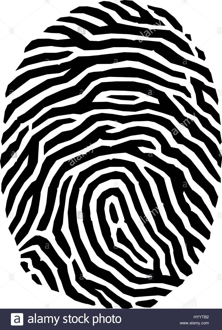 937x1390 Finger Print Vector Illustration Stock Vector Art Amp Illustration