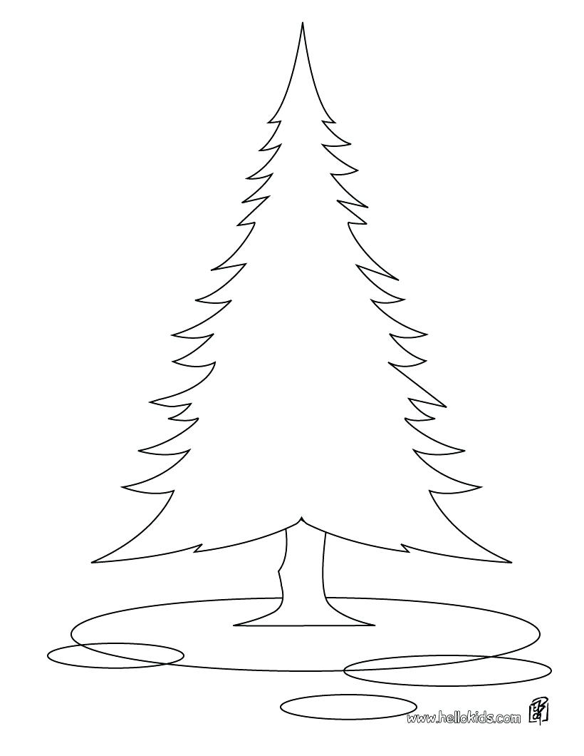 820x1060 Fir Tree Coloring Page 75 Glamorous Of A Trunk Coloring Page Tree