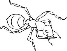 236x179 Fire Ant Coloring Page