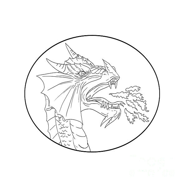 600x600 Dragon Fire Circle Drawing Digital Art By Aloysius Patrimonio