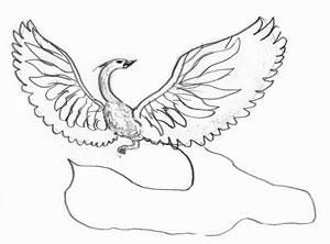 300x222 How To Draw A Fire Bird