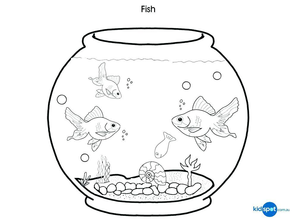 Fish Bowl Drawing At GetDrawings.com