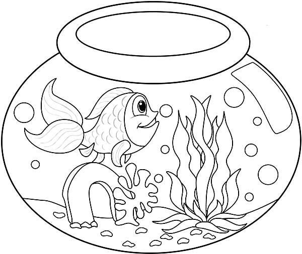 fish bowl drawing at getdrawings com free for personal use fish