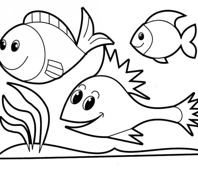 678x598 Printable Fish Coloring Pages Page