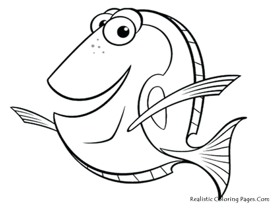 940x705 Coloring Pages Of Coral Reefs Fishes Reef