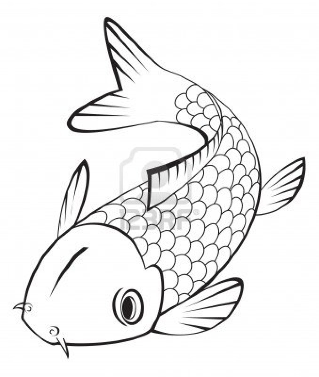 1017x1200 Simple Koi Fish Drawing Koi Fish Clipart Line Drawing