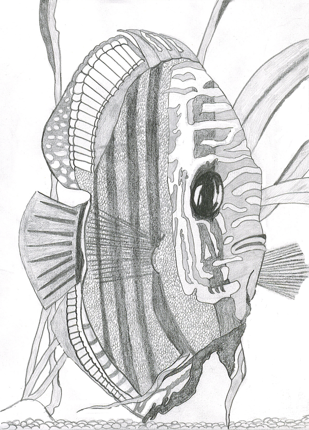1192x1656 Tropical Fish By Pyrros Wulf