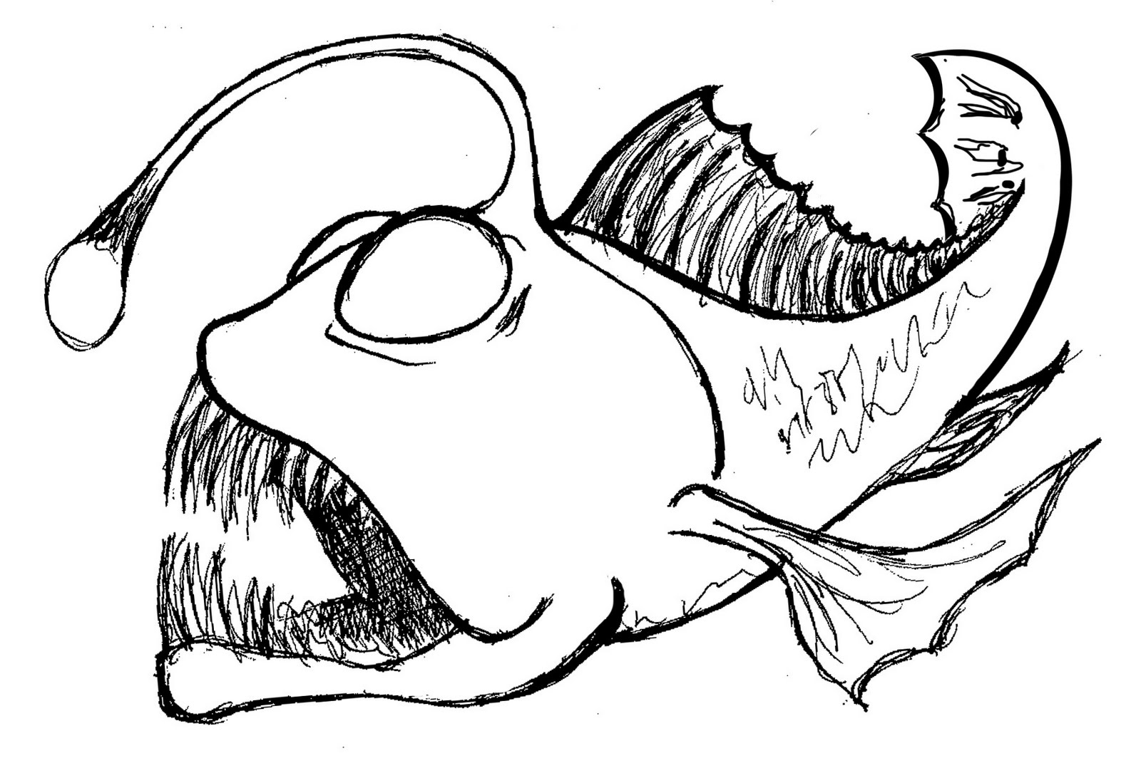 1600x1085 Anglerfish Clipart Drawing