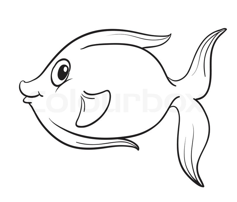 800x682 Fish Outline Stock Vector Colourbox