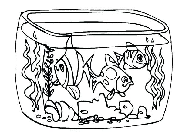 600x450 Outline Of Fish To Color Pin Drawn Fish Outline Drawing 2 Fish