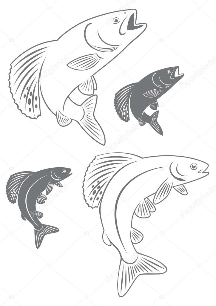 724x1024 Outline And Silhouette Of Fish Grayling Stock Vector Kvasay
