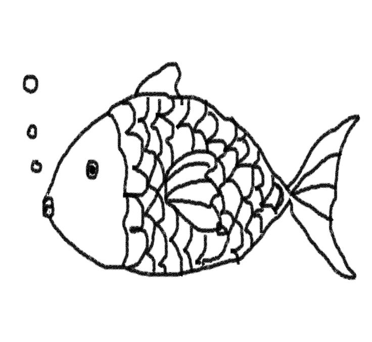 736x676 Fish Line Drawing Group
