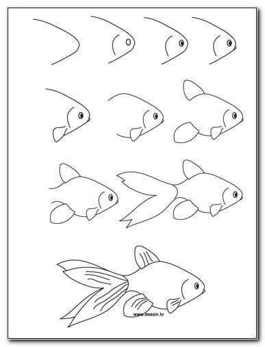 Fish Drawing Step By Step